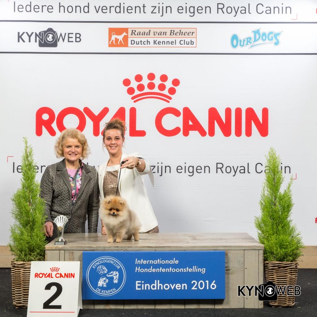 B_2_Vrijdag_Eindhoven_2016_Kynoweb- Ernst von Scheven_January 22, 2016_15_36_51
