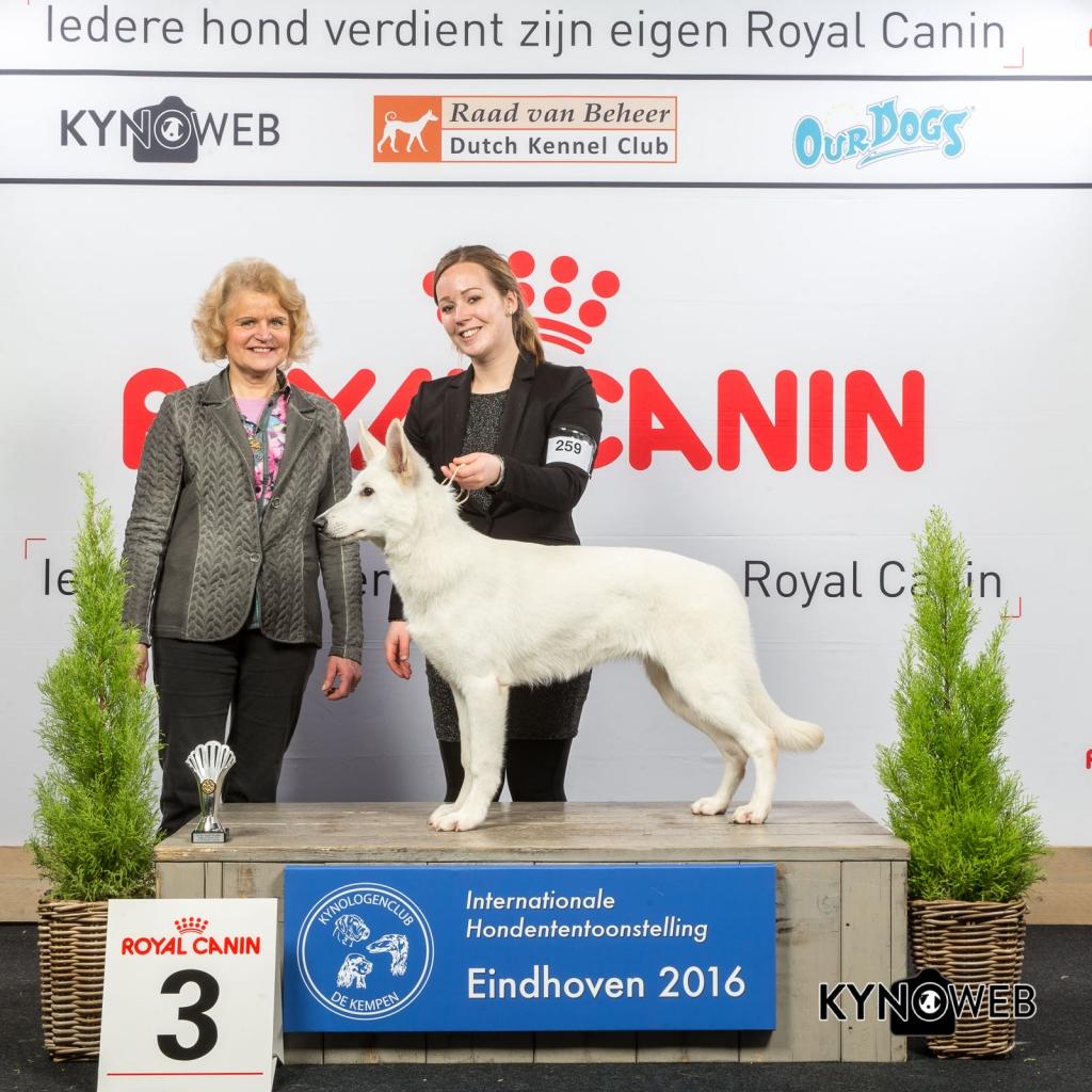 B_3_Vrijdag_Eindhoven_2016_Kynoweb- Ernst von Scheven_January 22, 2016_15_37_56