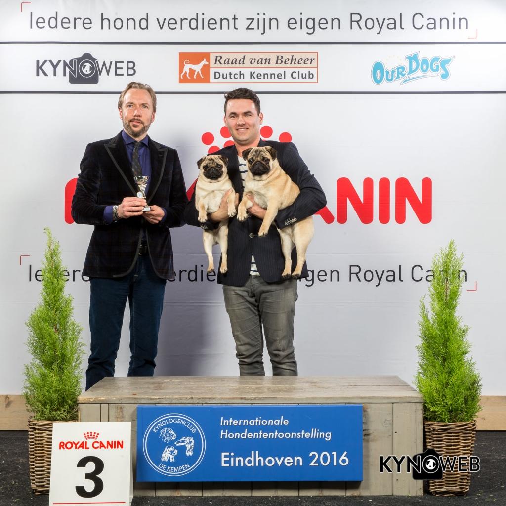 K_3_Zondag_Eindhoven_2016_Kynoweb- Ernst von Scheven_January 24, 2016_16_14_09