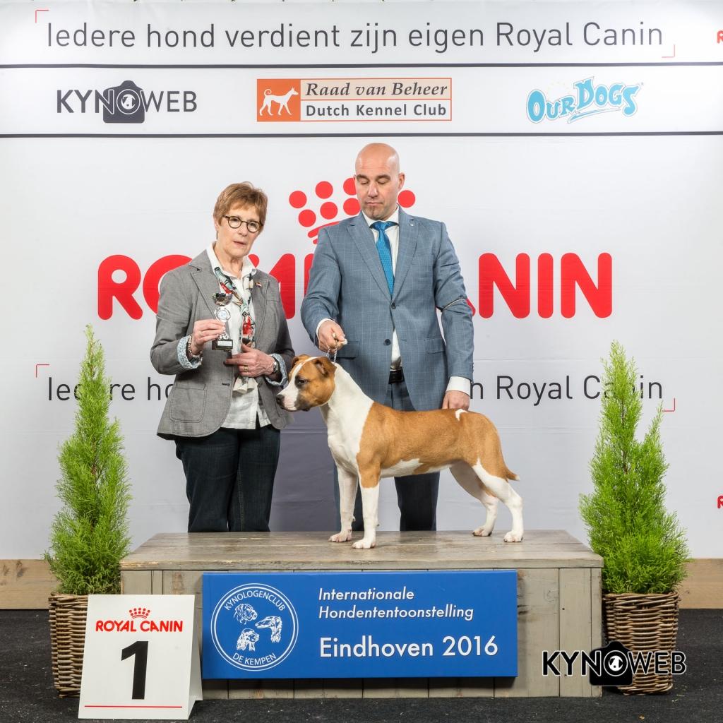 P_1_Zaterdag_Eindhoven_2016_Kynoweb- Ernst von Scheven_January 23, 2016_15_20_53