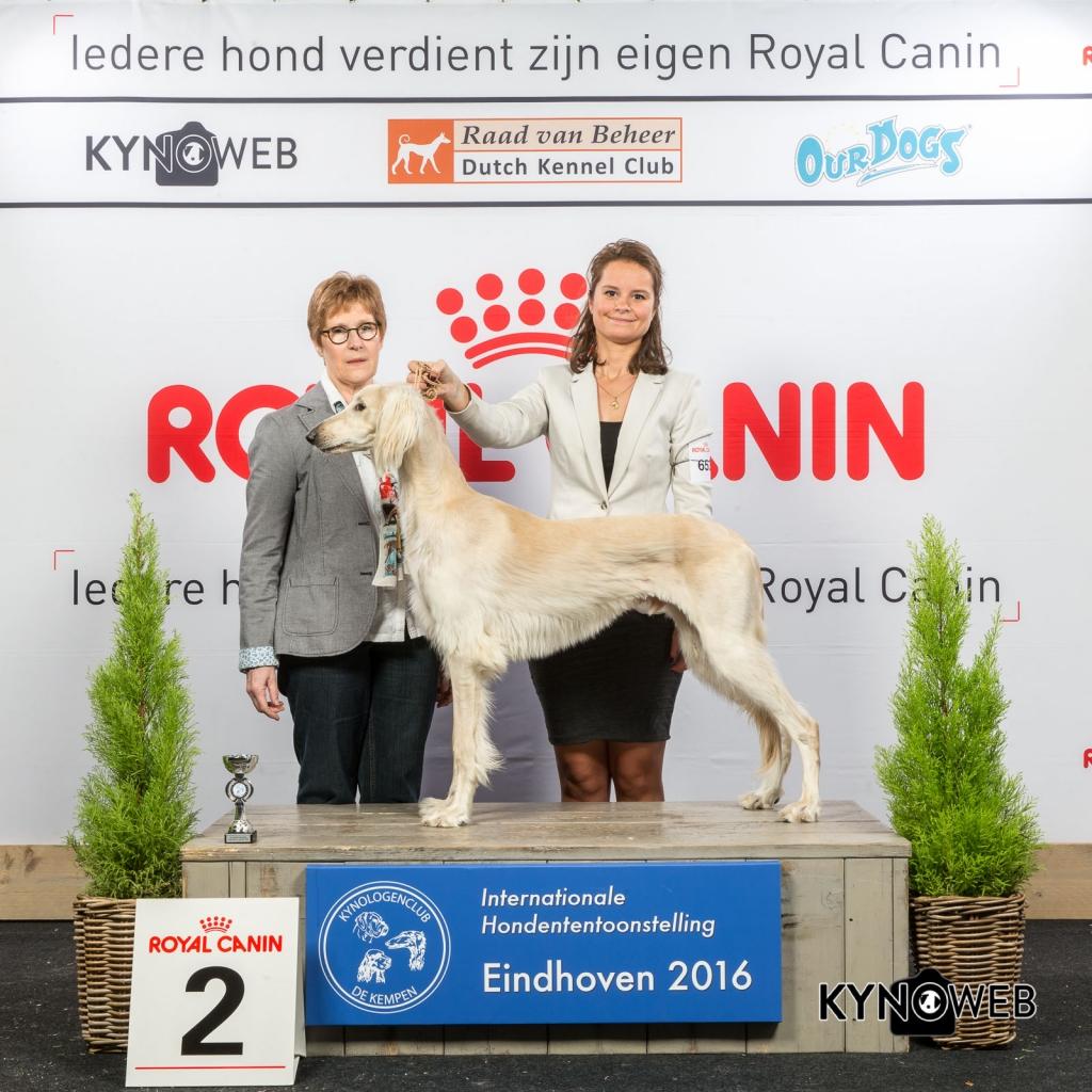 P_2_Zaterdag_Eindhoven_2016_Kynoweb- Ernst von Scheven_January 23, 2016_15_17_24