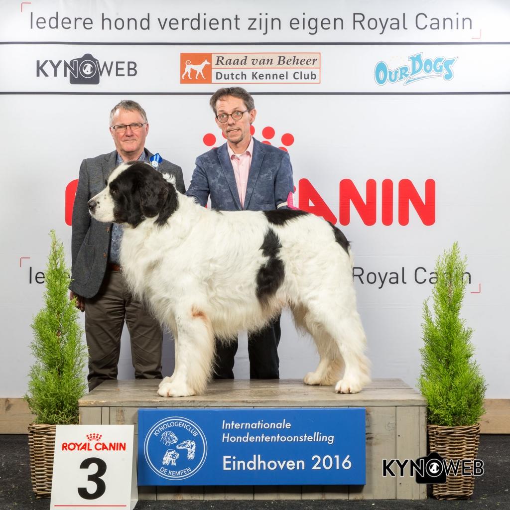 V_3_Zondag_Eindhoven_2016_Kynoweb- Ernst von Scheven_January 24, 2016_16_09_00