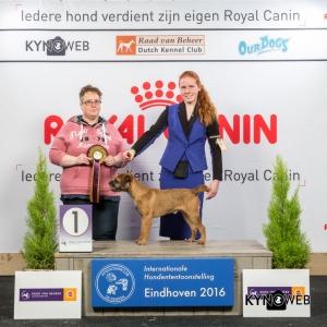 JH_1_Zaterdag_Eindhoven_2016_Kynoweb- Ernst von Scheven_January 23, 2016_15_01_17