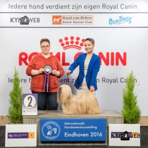 JH_2_Zondag_Eindhoven_2016_Kynoweb- Ernst von Scheven_January 24, 2016_15_39_18