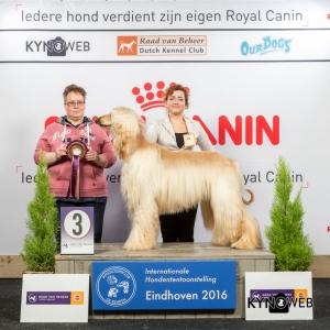 JH_3_Zaterdag_Eindhoven_2016_Kynoweb- Ernst von Scheven_January 23, 2016_15_04_46