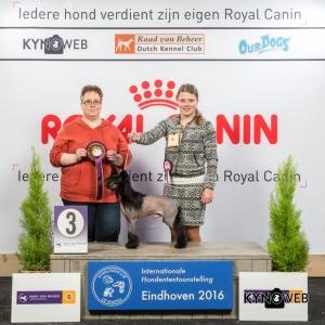 JH_3_Zondag_Eindhoven_2016_Kynoweb- Ernst von Scheven_January 24, 2016_15_40_32
