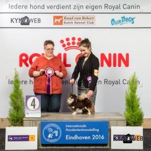 JH_4_Zondag_Eindhoven_2016_Kynoweb- Ernst von Scheven_January 24, 2016_15_42_21