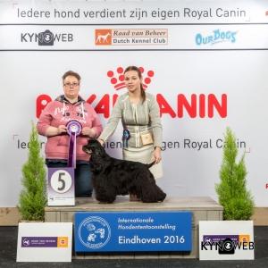 JH_5_Zaterdag_Eindhoven_2016_Kynoweb- Ernst von Scheven_January 23, 2016_15_06_46