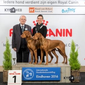 K_1_Vrijdag_Eindhoven_2016_Kynoweb- Ernst von Scheven_January 22, 2016_15_54_08