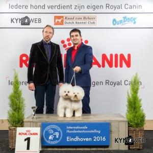 K_1_Zondag_Eindhoven_2016_Kynoweb- Ernst von Scheven_January 24, 2016_16_19_17