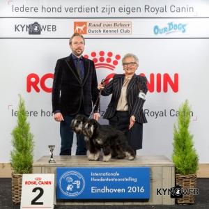 K_2_Zondag_Eindhoven_2016_Kynoweb- Ernst von Scheven_January 24, 2016_16_10_53