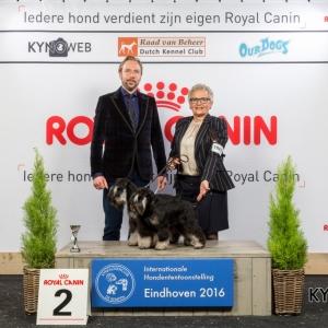 K_2_Zondag_Eindhoven_2016_Kynoweb- Ernst von Scheven_January 24, 2016_16_11_29