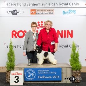 P_3_Zaterdag_Eindhoven_2016_Kynoweb- Ernst von Scheven_January 23, 2016_15_19_51