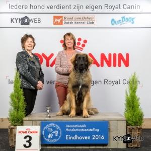 P_3_Zondag_Eindhoven_2016_Kynoweb- Ernst von Scheven_January 24, 2016_16_04_30