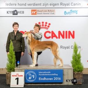V_1_Zaterdag_Eindhoven_2016_Kynoweb- Ernst von Scheven_January 23, 2016_15_25_06