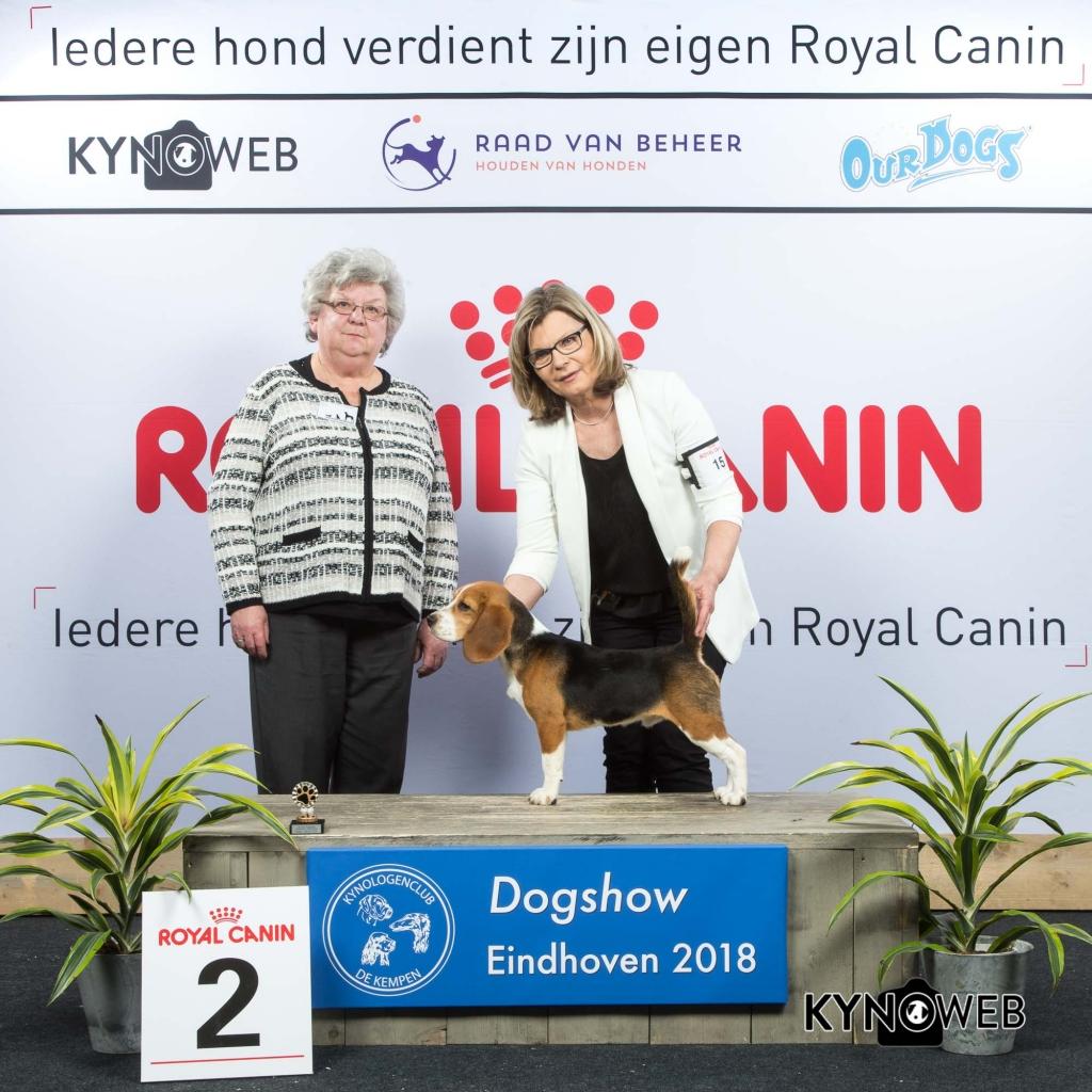 P_2_EINDHOVEN_2018_Kynoweb__20180202_15_46_51