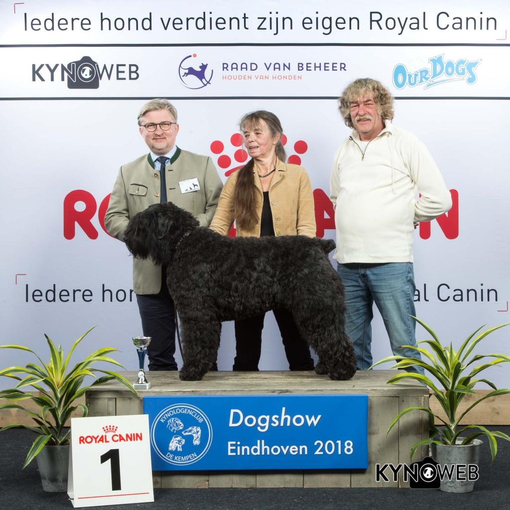 V_1_EINDHOVEN_2018_Kynoweb__20180202_15_50_42