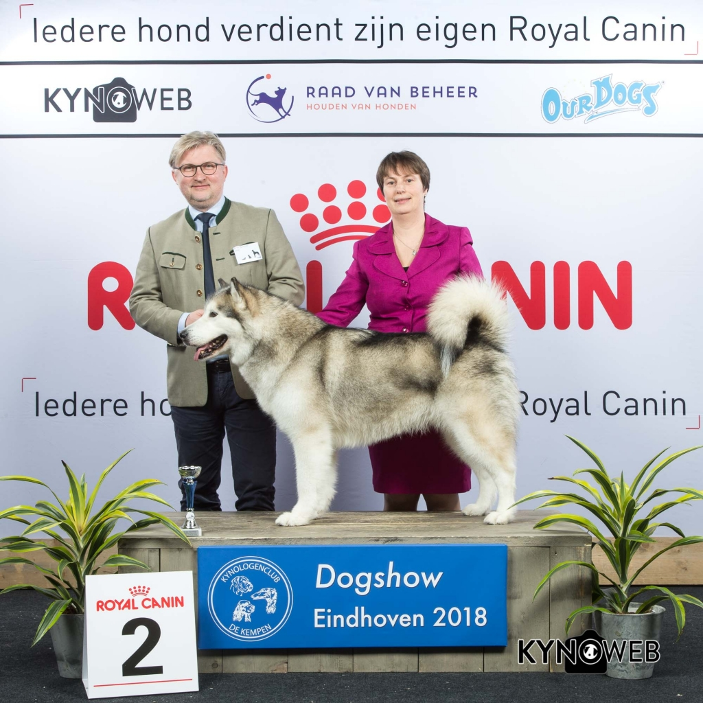 V_2_EINDHOVEN_2018_Kynoweb__20180202_16_17_08