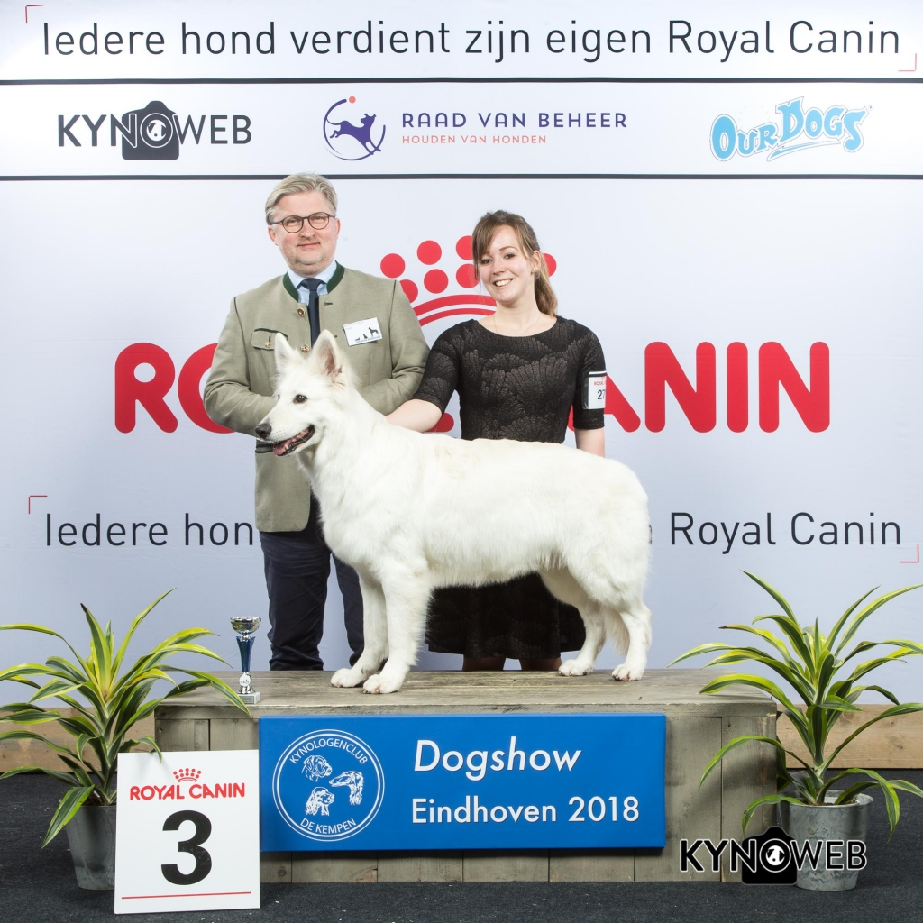V_3_EINDHOVEN_2018_Kynoweb__20180202_15_51_41