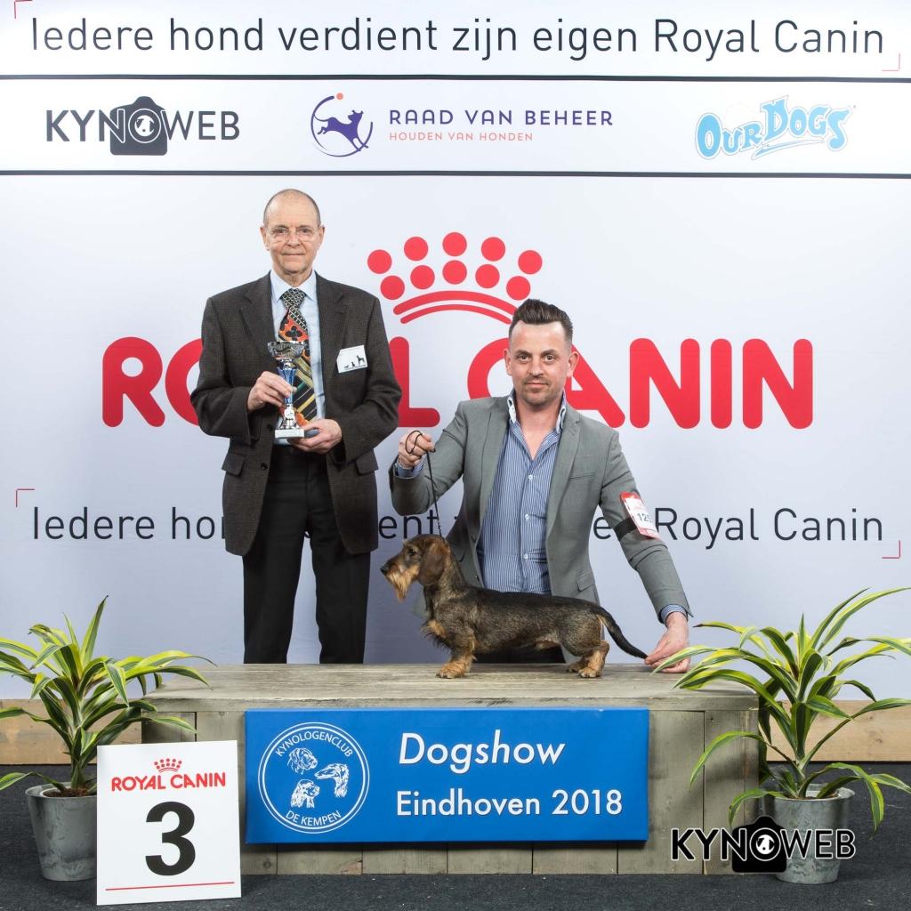G_4_3_EINDHOVEN_2018_Kynoweb__20180203_16_16_57