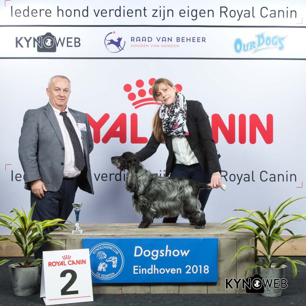 V_2_EINDHOVEN_2018_Kynoweb__20180203_15_49_39