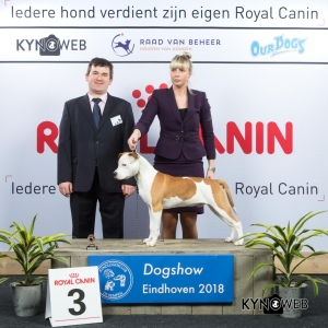 J_3_EINDHOVEN_2018_Kynoweb__20180203_15_36_00