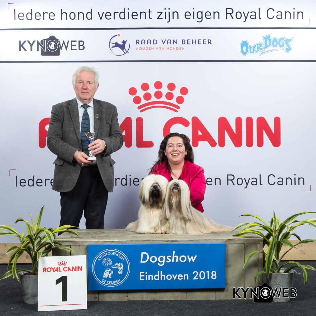 K_1_EINDHOVEN_2018_Kynoweb__20180204_16_15_23
